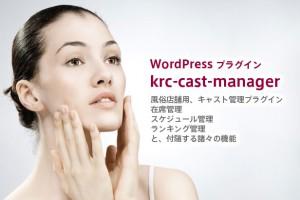 WordPress プラグイン 風俗用在席管理システム